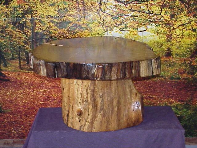 Mushroom Oak Log